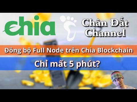 Đồng bộ Full Node trên Chia Blockchain chỉ mất 5 phút #chiacoin #chia