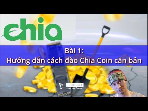 Hướng dẫn căn bản cách đào Chia coin bằng ổ cứng SSD HDD #Chia #ChiaCoin #ChiaNetwork