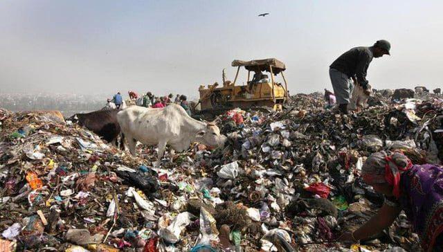 Công nghệ xử lý rác ở Singapore