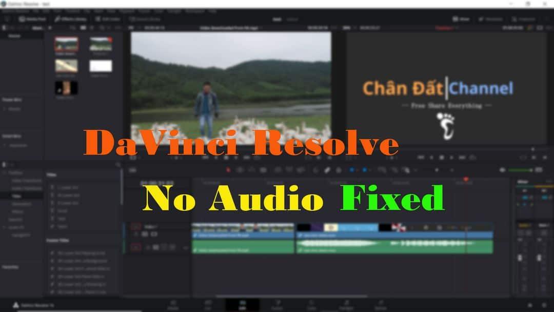 Davinci Resolve No Audio - có hình nhưng không có tiếng