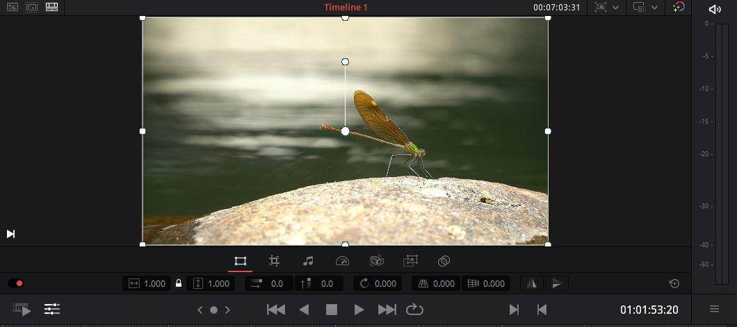 Trang Cut trên DaVinci Resolve 16 - Transform, Color, Audio And Text
